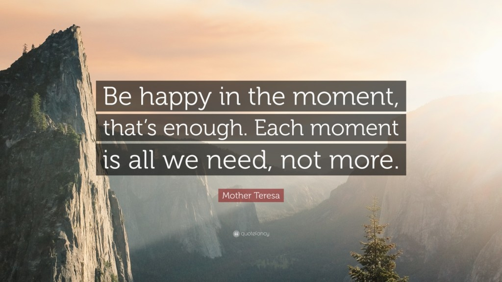 41662-Mother-Teresa-Quote-Be-happy-in-the-moment-that-s-enough-Each